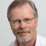 Prof WH (Herman) STEYN